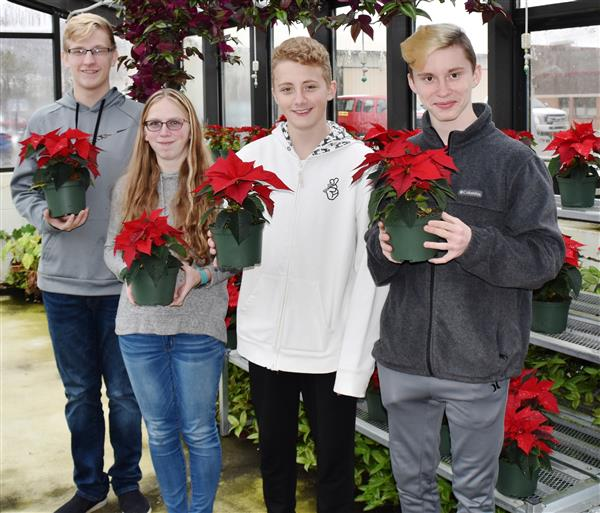 FFA selling holiday flowers